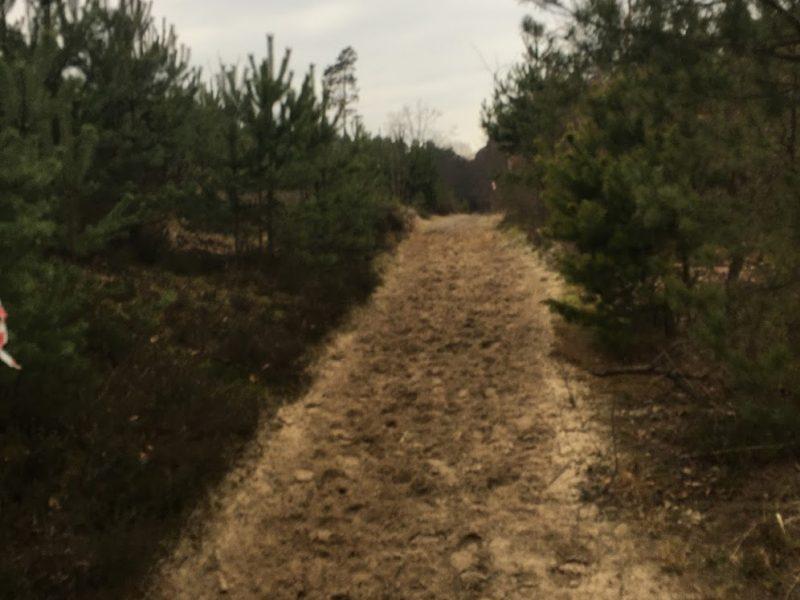 Raport z Trasy III Etapu Górskiego Biegu Nawoja